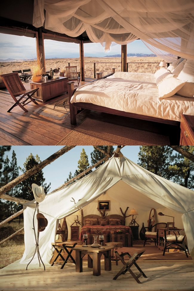 paws up resort large 650x975 Paws Up Luxury Camping