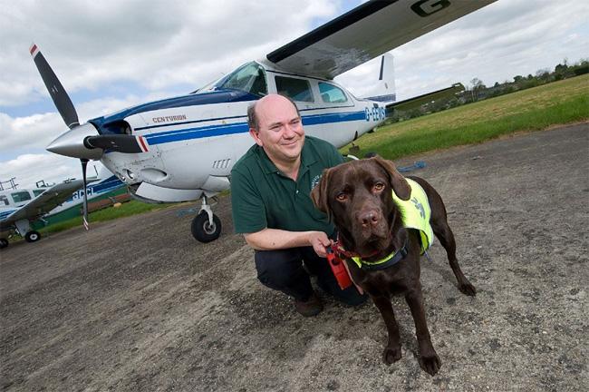 547 British Pet Dog Gets Co Pilot License