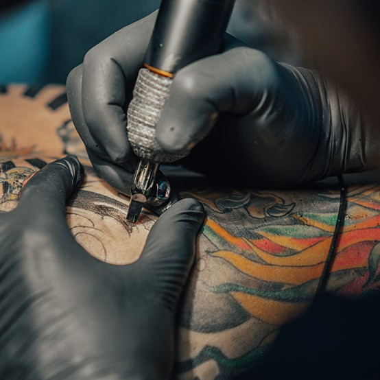 control de plagas en estudios de tatuajes y micropigmentación
