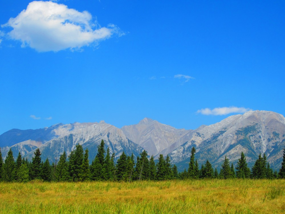What Can You Do in Canmore, Alberta - when you are injured?  (6/6)