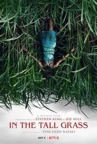 Download In the Tall Grass (2019) English Movie