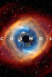 Download Cosmos: A Spacetime Odyssey (2014) S02 Dual Audio {Hindi-English} WEB Series