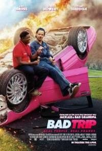 Download Bad Trip (2020) Dual Audio {Hindi-English} Movie