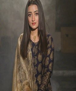 Pakistan Film Industry black truth surfaced, the actress was offered a gold in exchange for a role_Pic Credit Google
