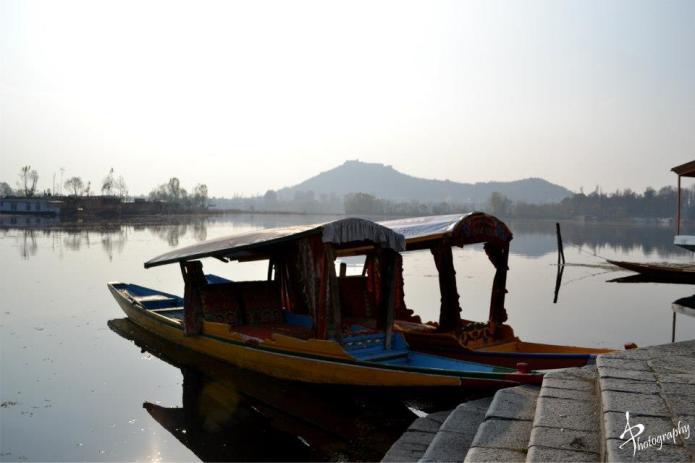shikara ashai bagh srinagar dal lake