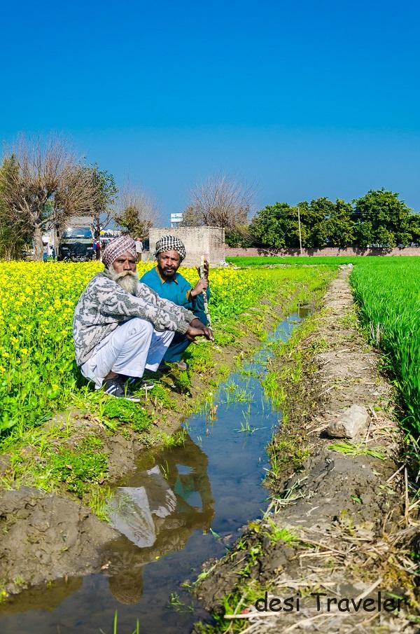 Farmers in Sarson Ke Khet