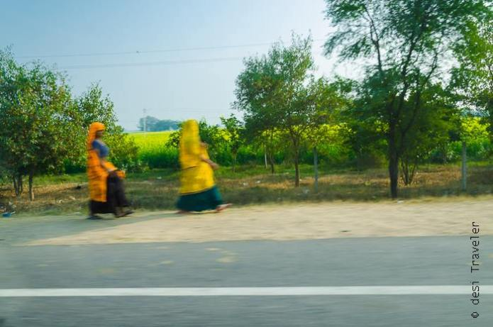 Women of Rajasthan in colorful dress