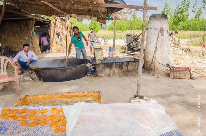 making-of-gur-in-punjab Jaggery making in Punjab