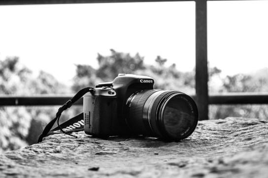 Photographer : Pranvi Kapur