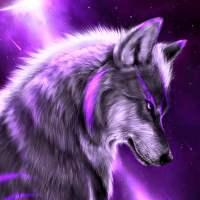 Фиолетовый волк