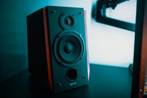 Image of a speaker