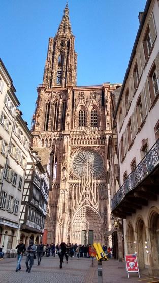 Notre Dame in het zonnetje