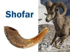 shofar-simbologia-blog-dab-radio-wordpress
