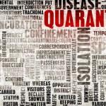 Muchas simulaciones para tan poca pandemia