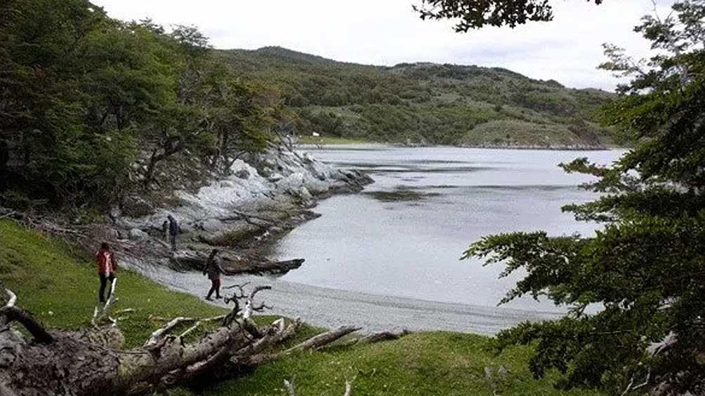 1553897406 737 El Parque Nacional Tierra del Fuego cerca de ser una de las 7 maravillas Télam - El Parque Nacional Tierra del Fuego, cerca de ser una de las 7 maravillas - Télam