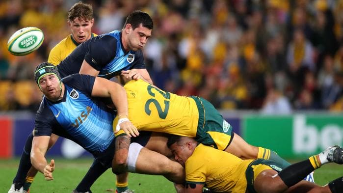 Rugby Championship Wallabies rugby Union Australia vs Argentina Rugby