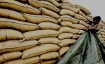 PTI Govt Swoops Down on Customs Officials; 7 Sacked for Alleged Wheat Smuggling