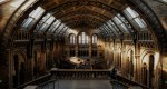 Dozens of Ghost Sightings at the British Museum in Recent Years