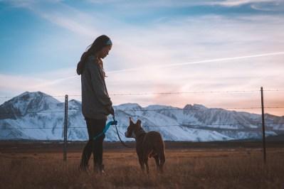 Femme et animaux