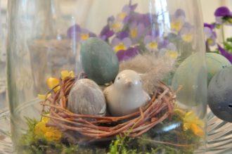 zoom nid et cloche en verre