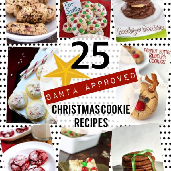 Christmas Cookie Roundup | Santa Approved