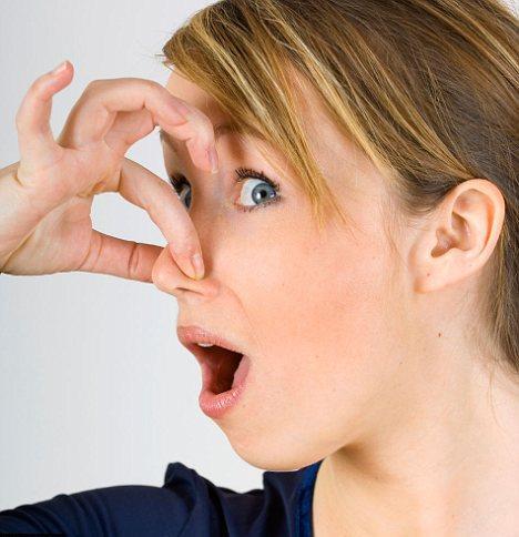 De Ce Miroase Fosa Septica?