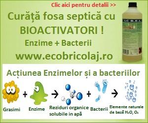 Curata fosa septica cu bioactivatori