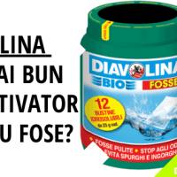 Diavolina, Cel Mai Bun Bioactivator [Pentru Fosa Septica]