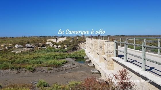 La Camargue à vélo sur la digue à la mer une autre façon de visiter jour 2