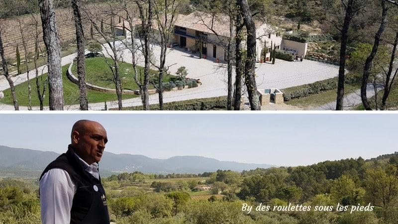visiter une oliveraie en Provence
