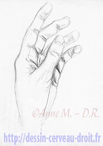 Dessin de sa main gauche vide, par Anne M., le lundi 22 février 2010.