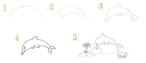 5 étapes pour dessiner un dauphin qui saute hors de l'eau