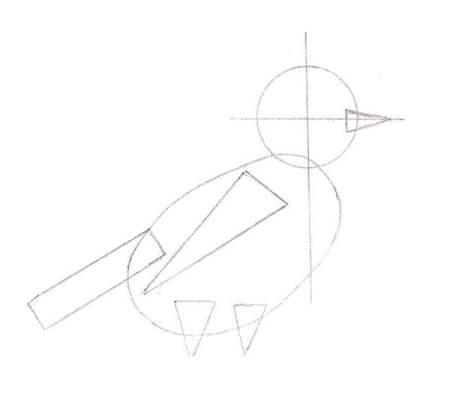 Dessine les formes de base du bec, de l'aile et des pattes