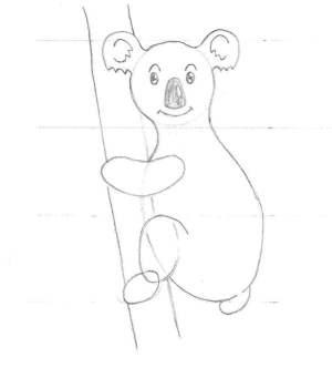 Le dessin des détails d'un koala mâle