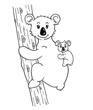 comment dessiner une maman koala et son bébé koala