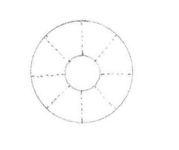 Première étape pour dessiner une  pâquerette de face : deux cercles et des repères.