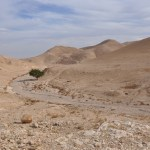 deserto-wadi-qelt