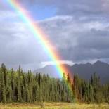 Perché Dio, dopo il diluvio, pose un arcobaleno nel cielo?