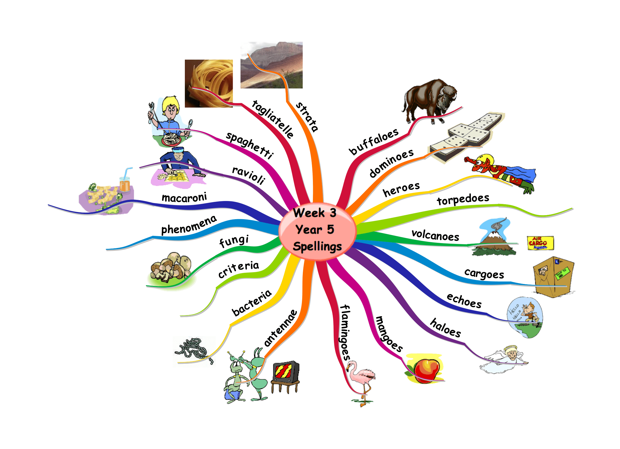Mind Maps For Education