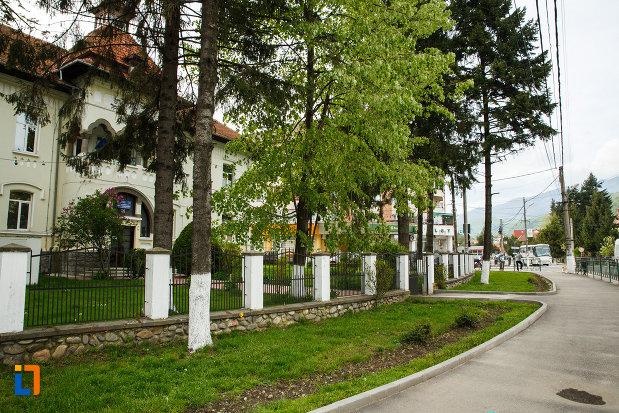 copaci-aflat-in-ansamblul-urban-calea-lui-traian-din-calimanesti-judetul-valcea.jpg