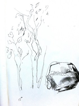 Quick sketch at first gorge
