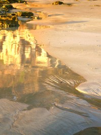 Wet sand and rock pool reflection 1