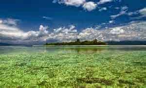 Terumbu karang Pulau Pombo