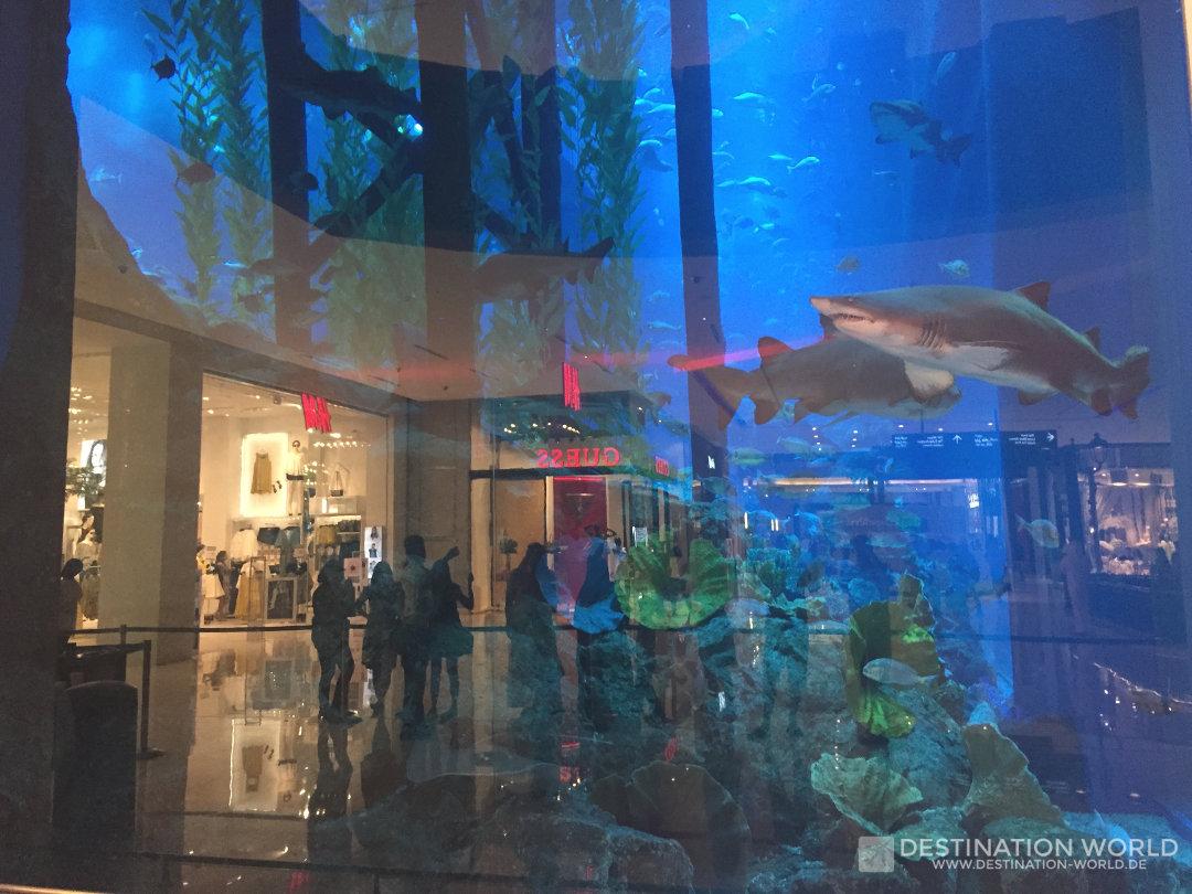 Das riesige Aquarium in der Dubai Mall reicht über zwei Stockwerke und beherbergt unter anderem Haie und Rochen