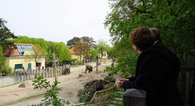 Tiergarten Schönbrunn Vienna Zoo