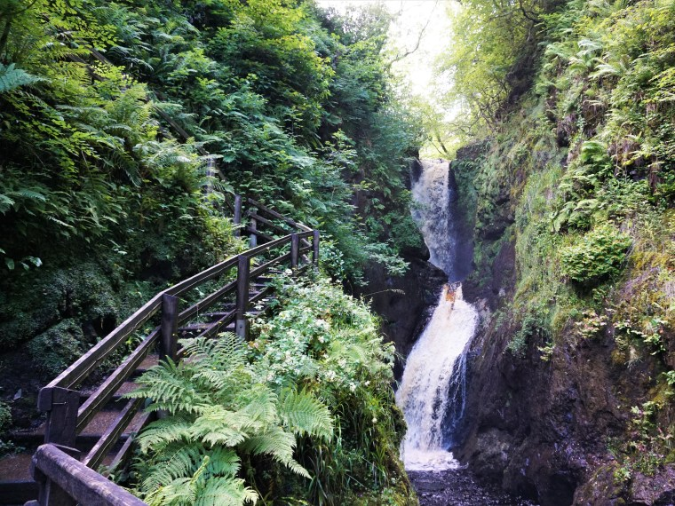 Vandretur Nordirland Glenariff Forest Park