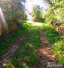 Долни Драгойча - път 5