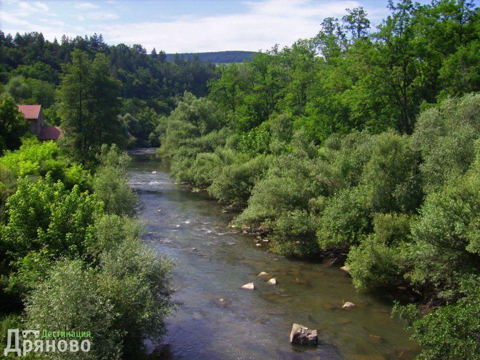 Река Янтра в близост до село Гостлица