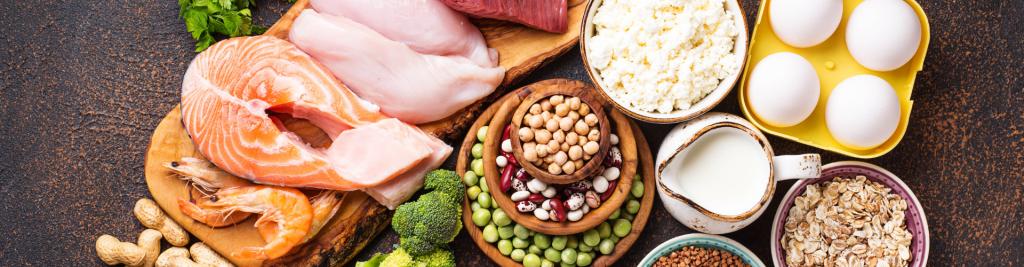 Les bases d'une bonne nutrition protéines