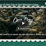 Destination Garden Route - One Day Plettenberg Bay Tsitsikamma